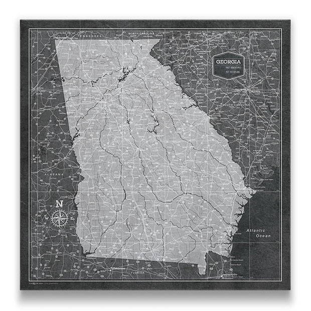 Georgia Push pin travel map modern slate