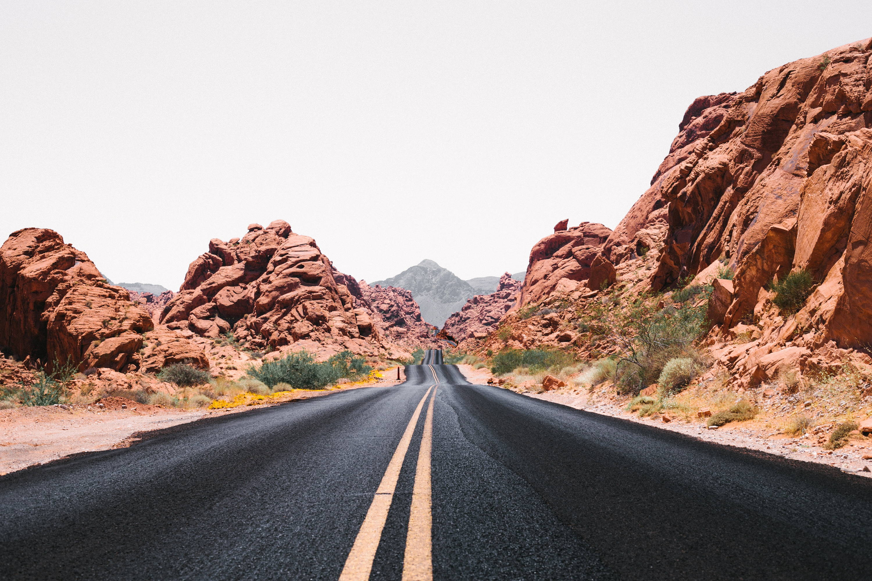 Valley of Fire State Park: The Complete Guide. Black road with double-yellow line flows through red rock formations with green brush on either side.