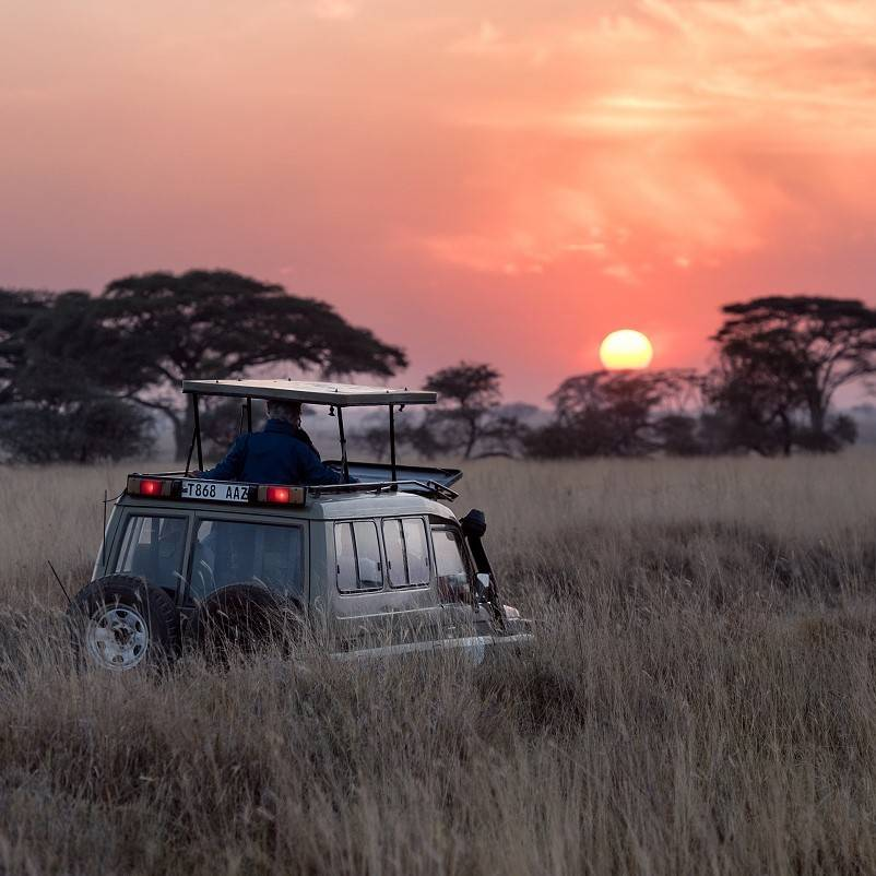 A jeep on a nature based tourism excursion in Africa