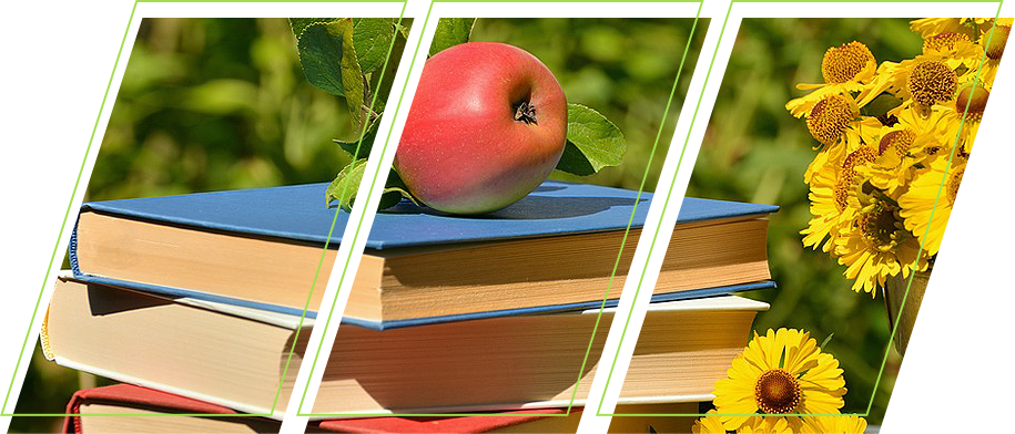 Books with apple on the top