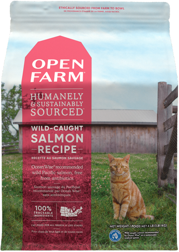 Wild-Caught Salmon Dry Cat Food