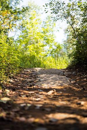 bike path in the fall