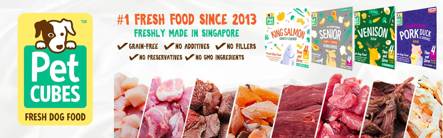 Pawpy Kisses Pet Cubes Singapore fresh dog food collection
