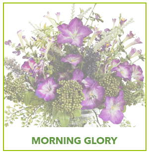 ARTIFICIAL MORNING GLORY PLANTS
