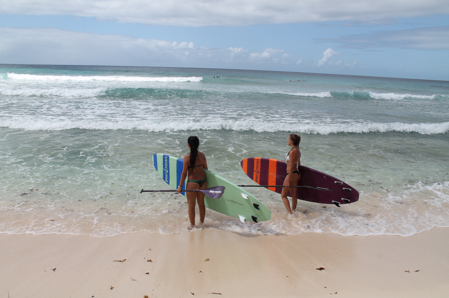 Surfboards in barbados