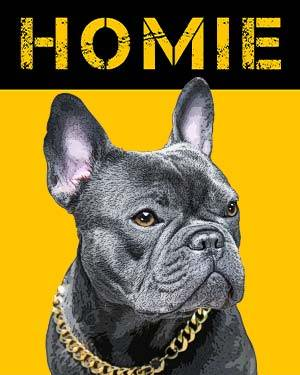 french bulldog homie background