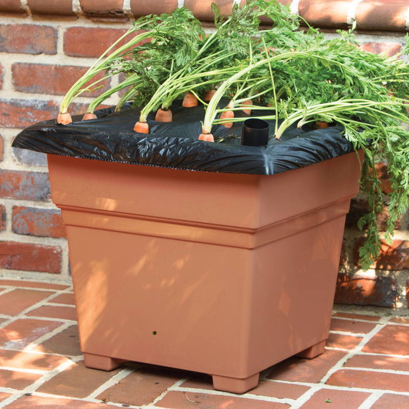 Terracotta EarthBox Root & Veg Container