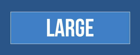 Size Large
