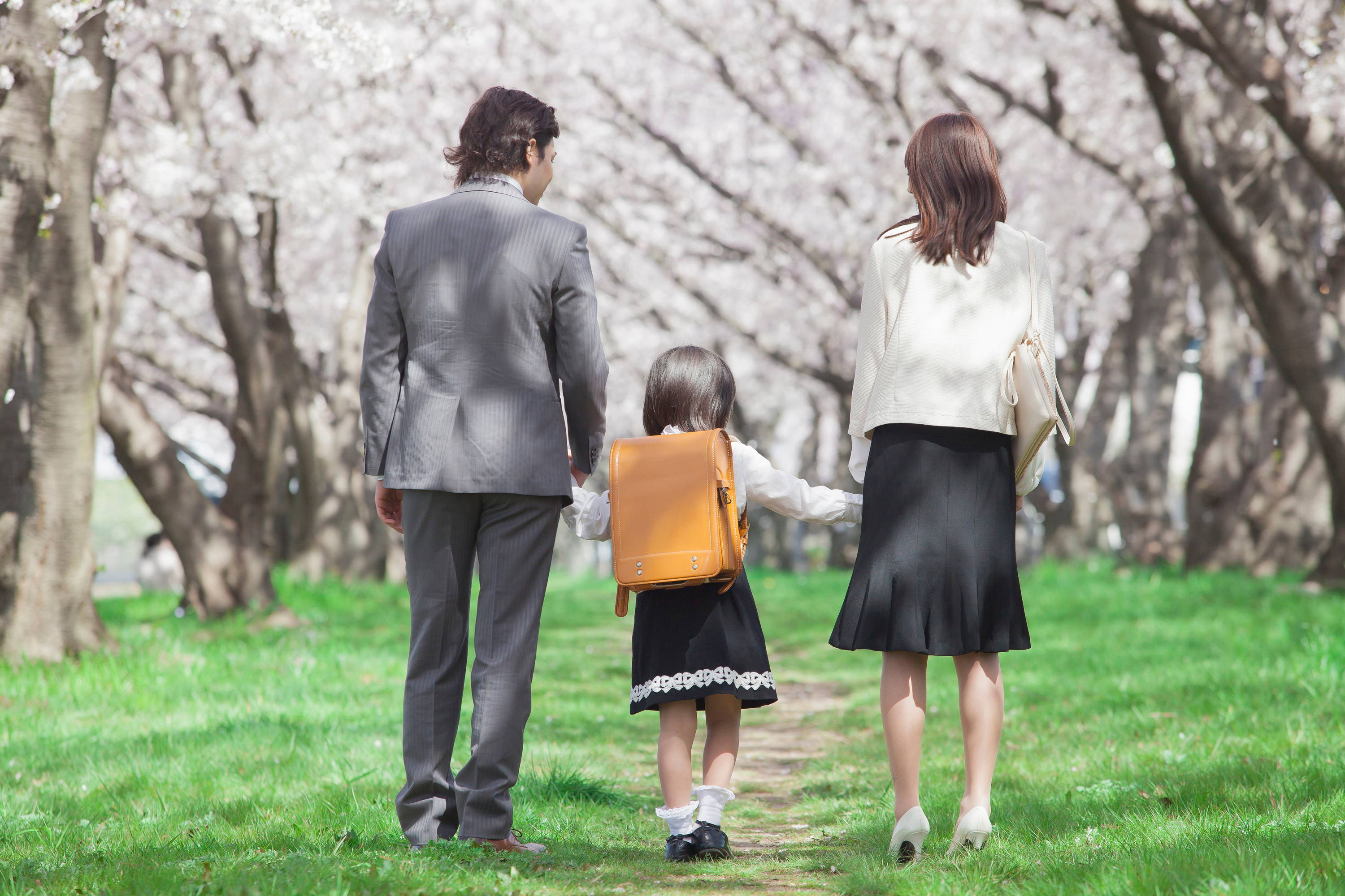 A Japanese family holding hands on cherry blossom pathway