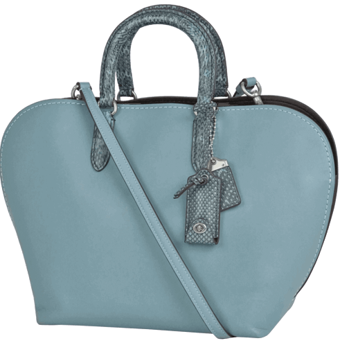 Coach _ ladies _ bags _ introduction