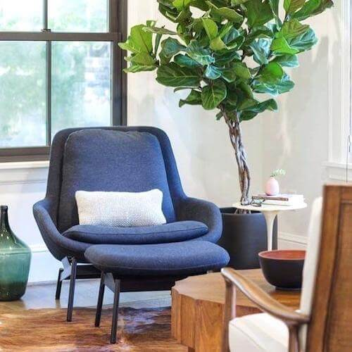 Bedroom Furniture - Lounge Chairs