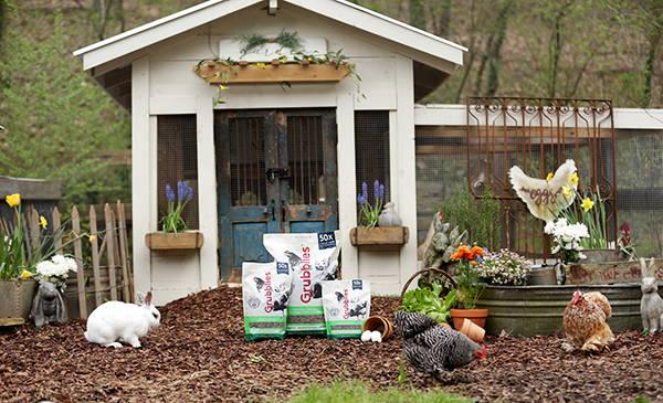15 Great Chicken Coop Ideas- Garden Shed