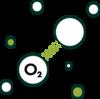 chlorophyll oxygen source icon