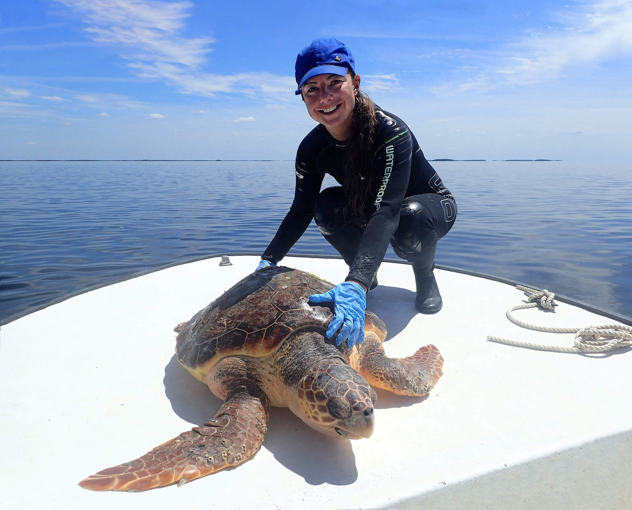 Dr. Fuentes with loggerhead turtle
