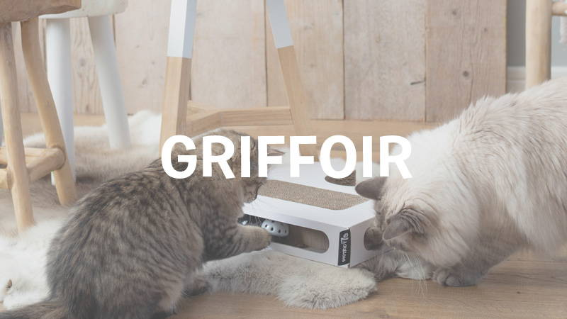 inooko-griffoir-pour-chat