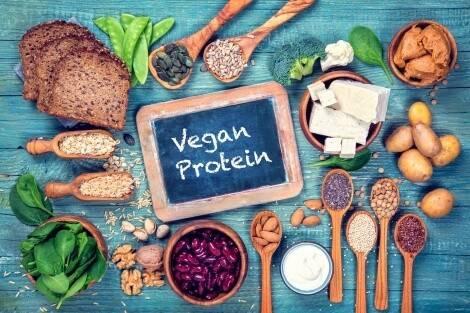 Pflanzliche Protein Qualität