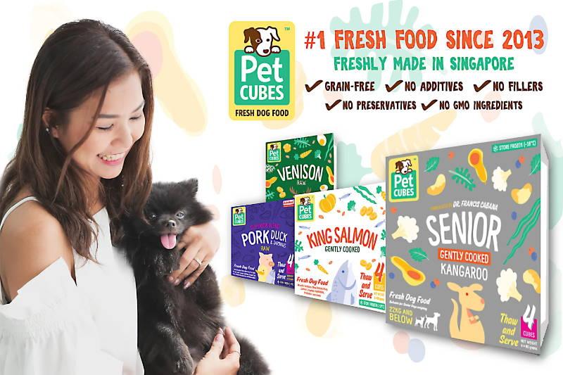 Pet Cubes fresh frozen dog food collection mobile