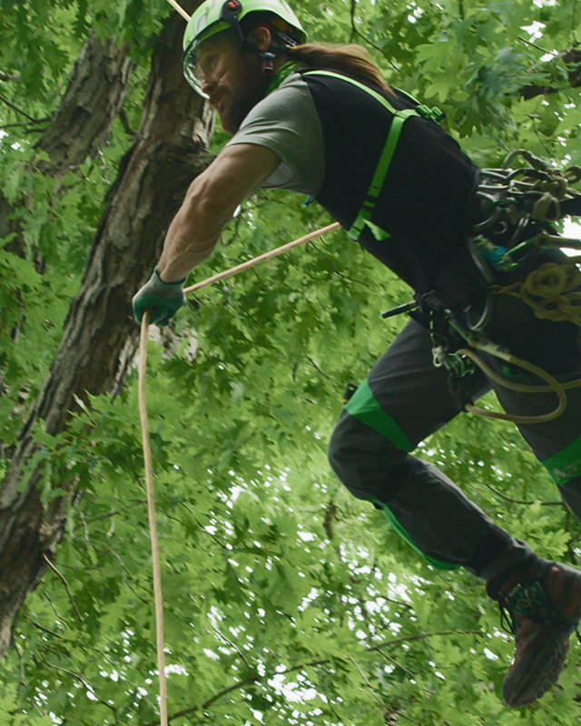 image of High performance products built by arborists, for arborists.