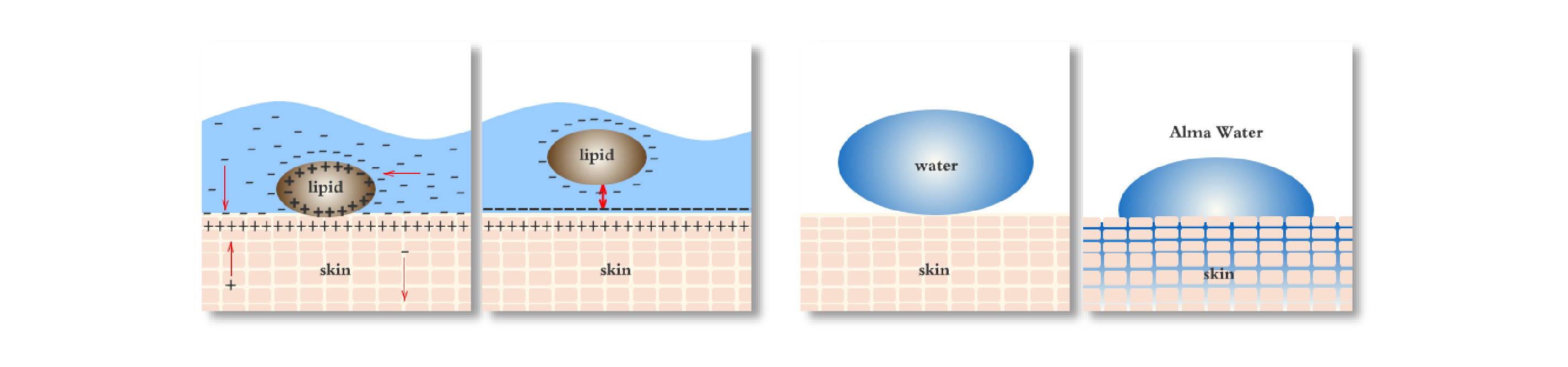 Alma Water effect on skin illustration