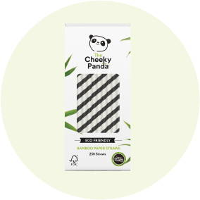 Eco Friendly Bamboo Staws