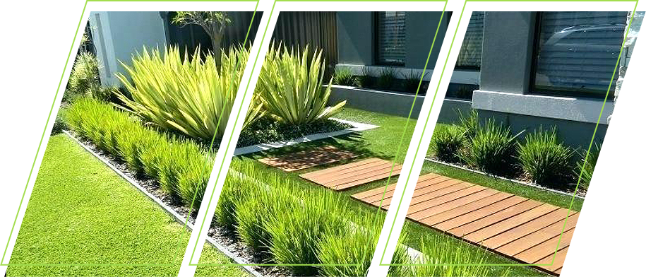 Modernized Garden