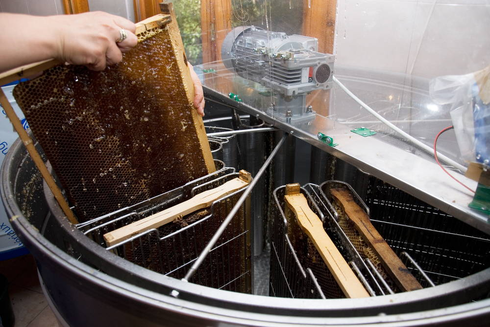 Electric Honey Extractor