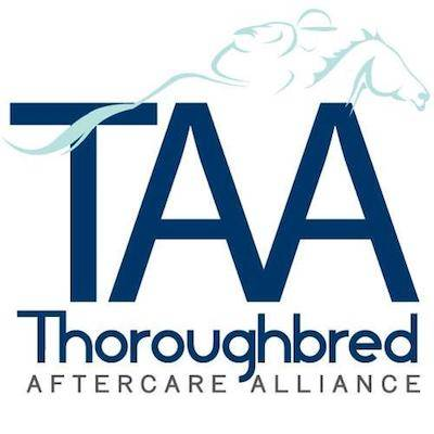 TAA, horse, horse racing