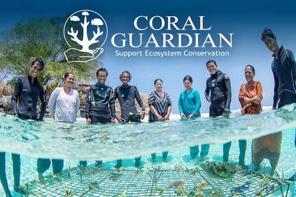 Conservation Corner: Coral Guardian
