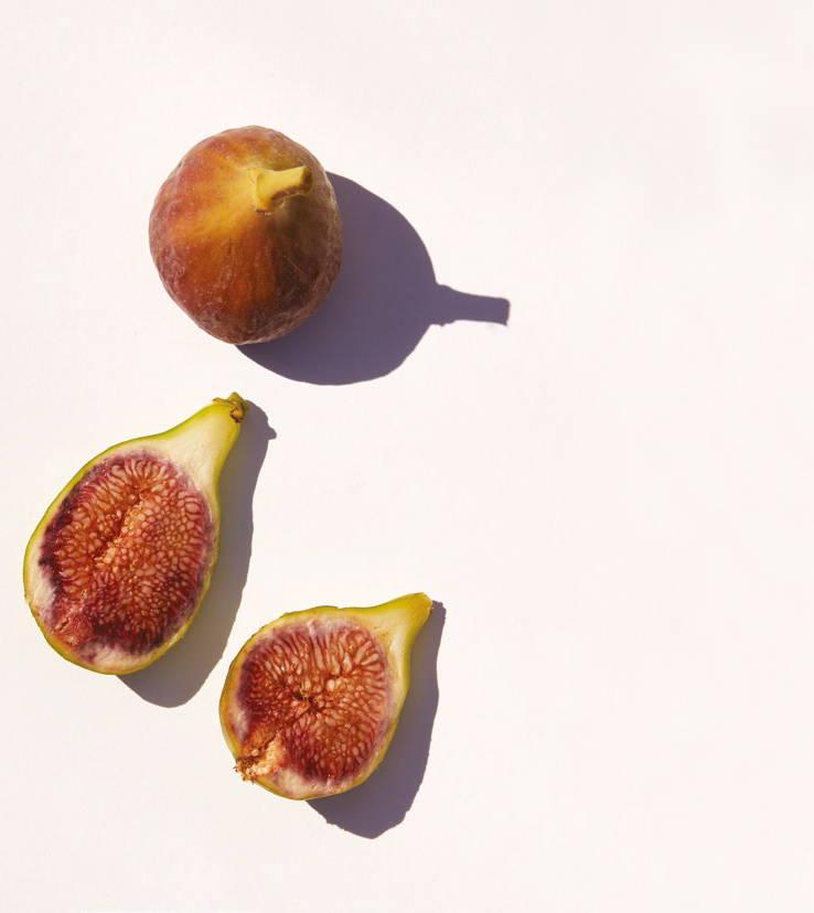 Bastide Figs