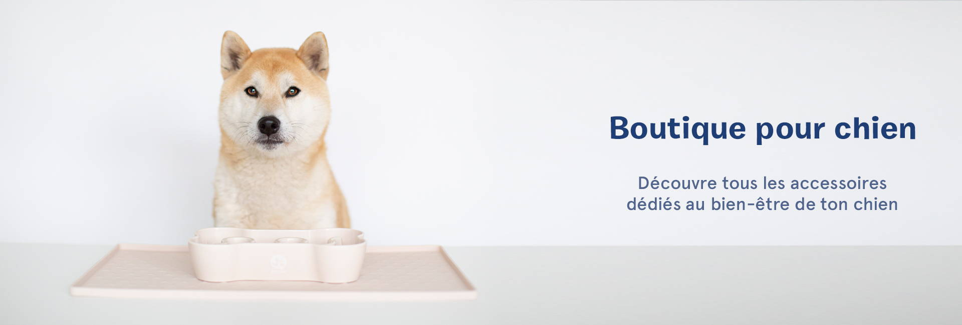 inooko-gamelle-design-boutique-chien-francais