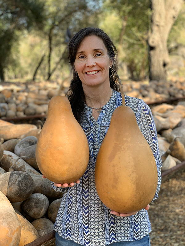Medium Tall-Body Gourds Range in Size from 7