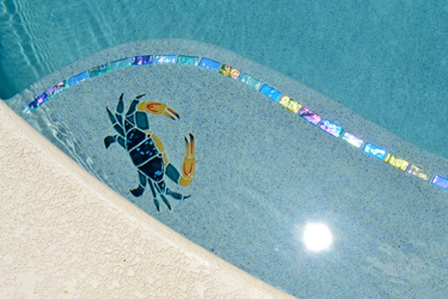 CBSMCOOS - Blue Swimmer Crab Pool Mosaic