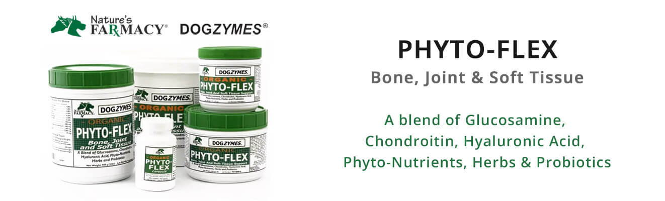 PHYTO-FLEX - Bone, Joint & Soft Tissue