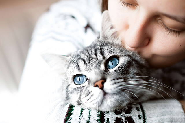 Why Your Cat's Microbiome Matters