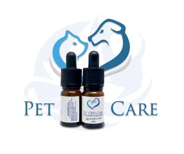 Pure Quality Nano CBD For Furry Friends With Global CBD Pet CBD Care