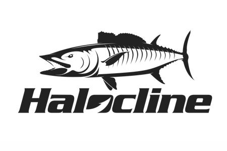 Halocline