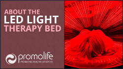 Infrared Light therapy Bed