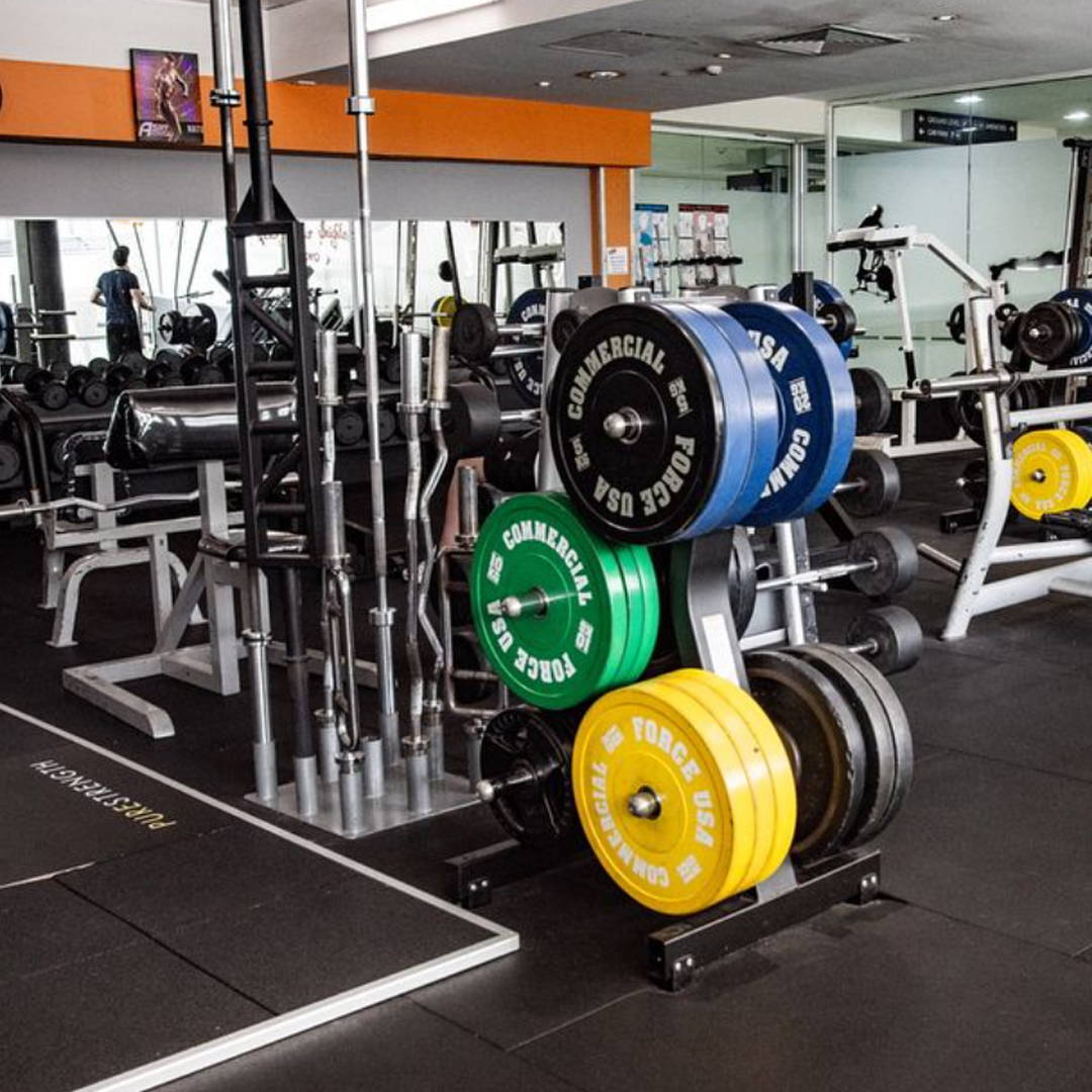 Commercial Gym Equipment Globe Health Club Gold Coast