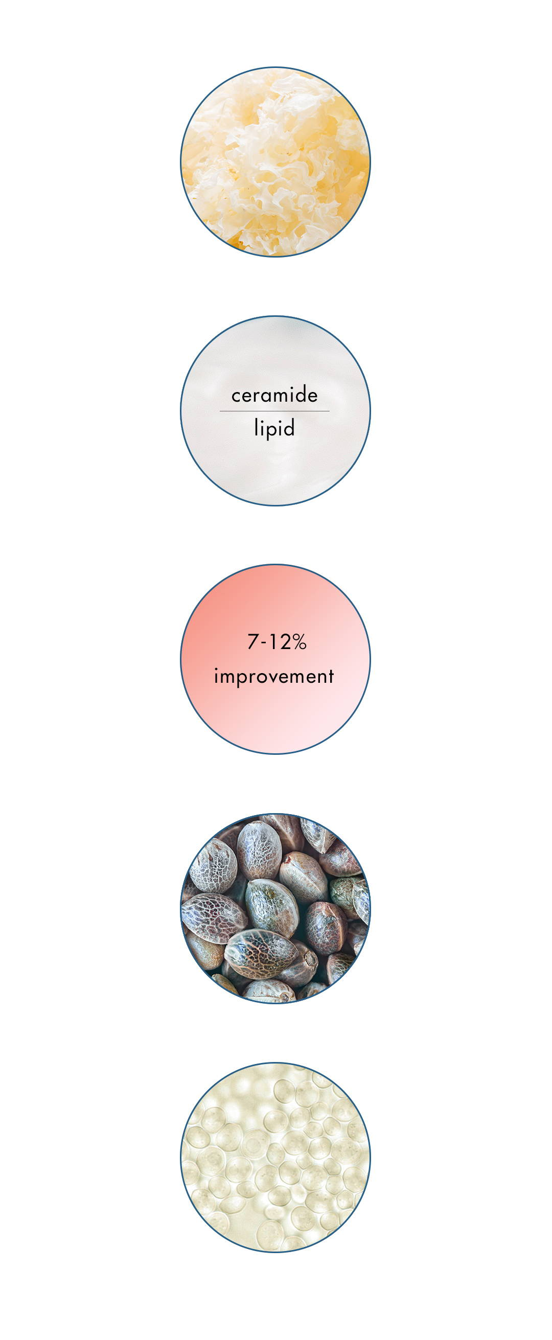 Barrier Fix Daily Hydrator Key Ingredients: Chinese Silver Ear Mushroom, Plant Glucosides, Hemp Seed Oil, Beta Glucan,