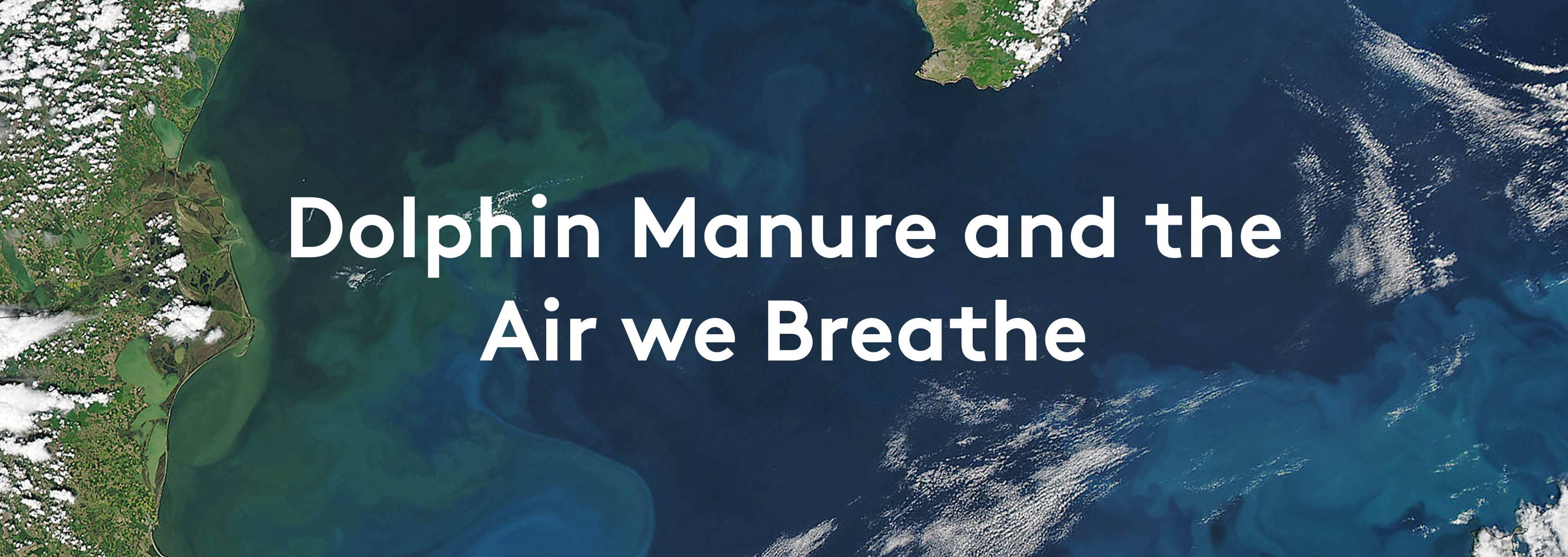 dolphine manure and the air we breathe