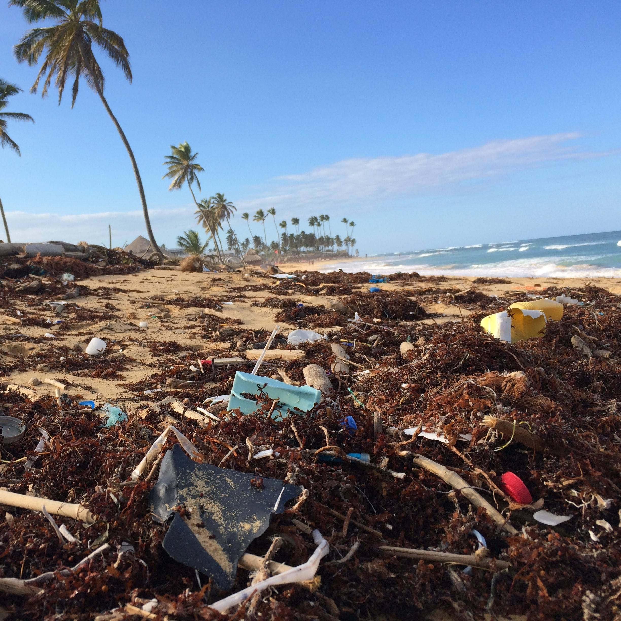 A tropical beach covered in plastic. Well in need of a beach clean up.
