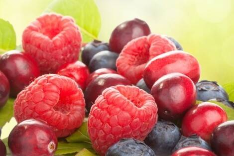Les fruits rouges font partie des fruits low carb