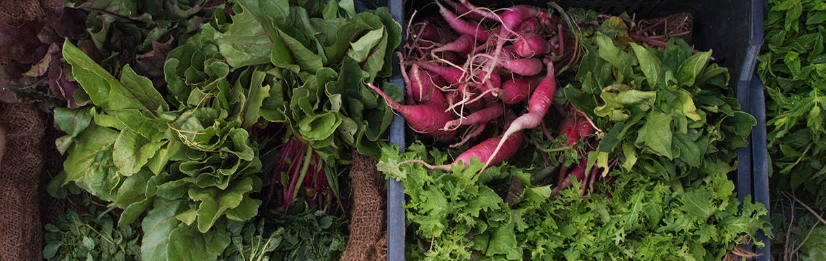 vegetables at a farm stand