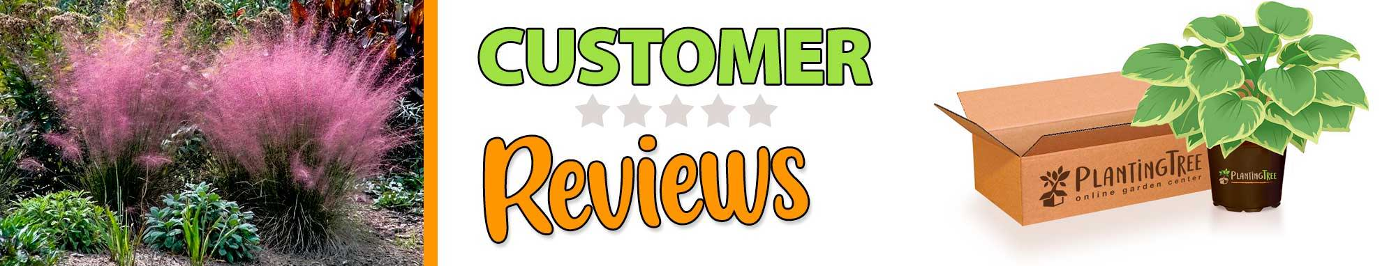 plantingtree customer reviews