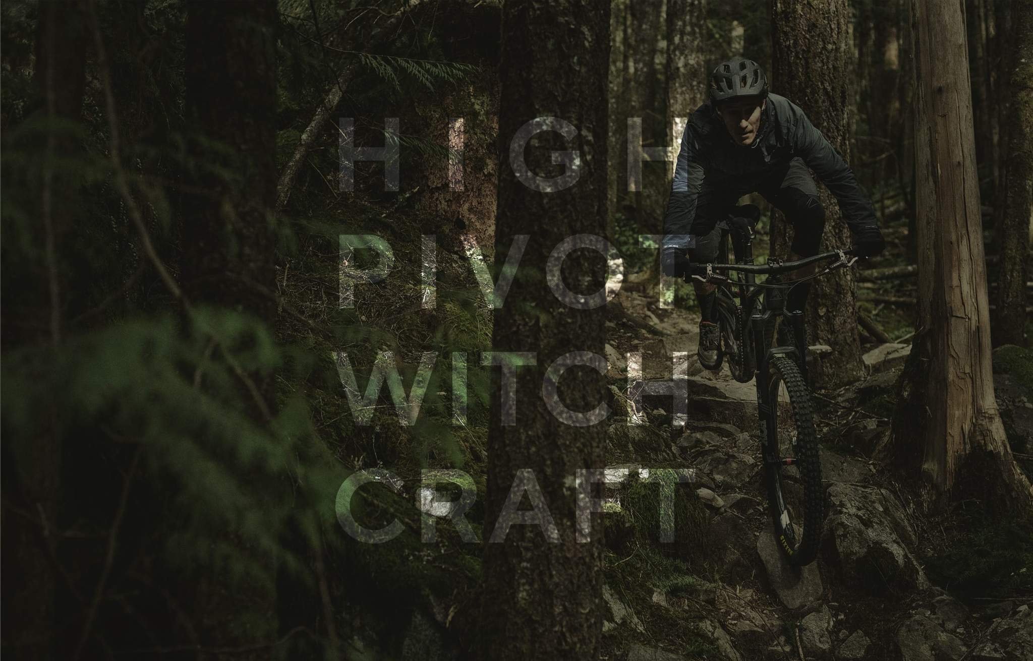 Forbidden Bike Company - Druid -