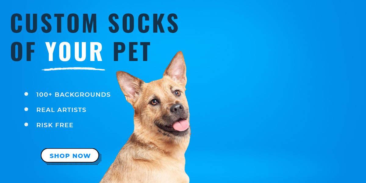 Custom pup socks hero banner -