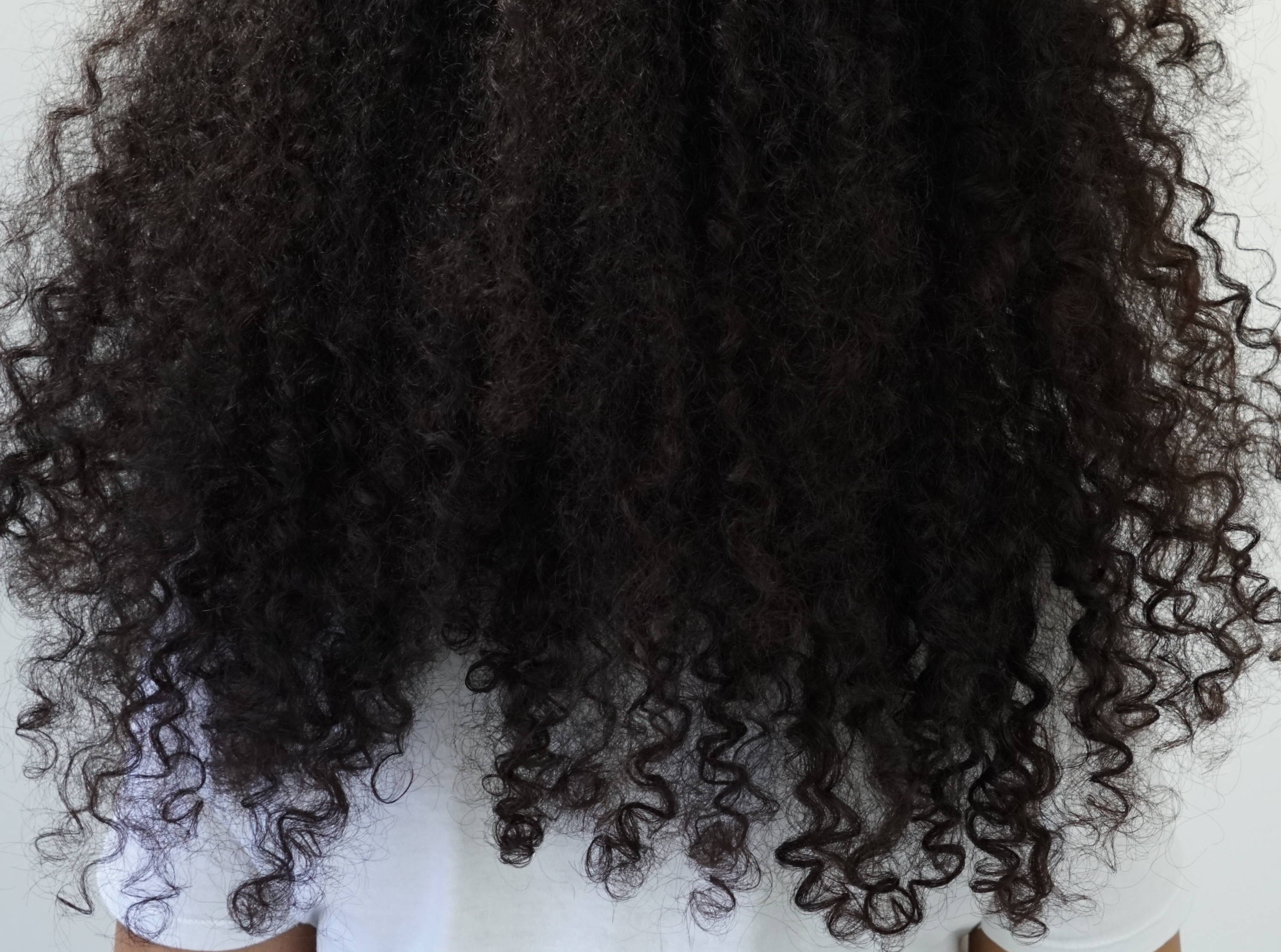 How To Treat Extremely Dry And Damaged Curly Hair Lus Brands