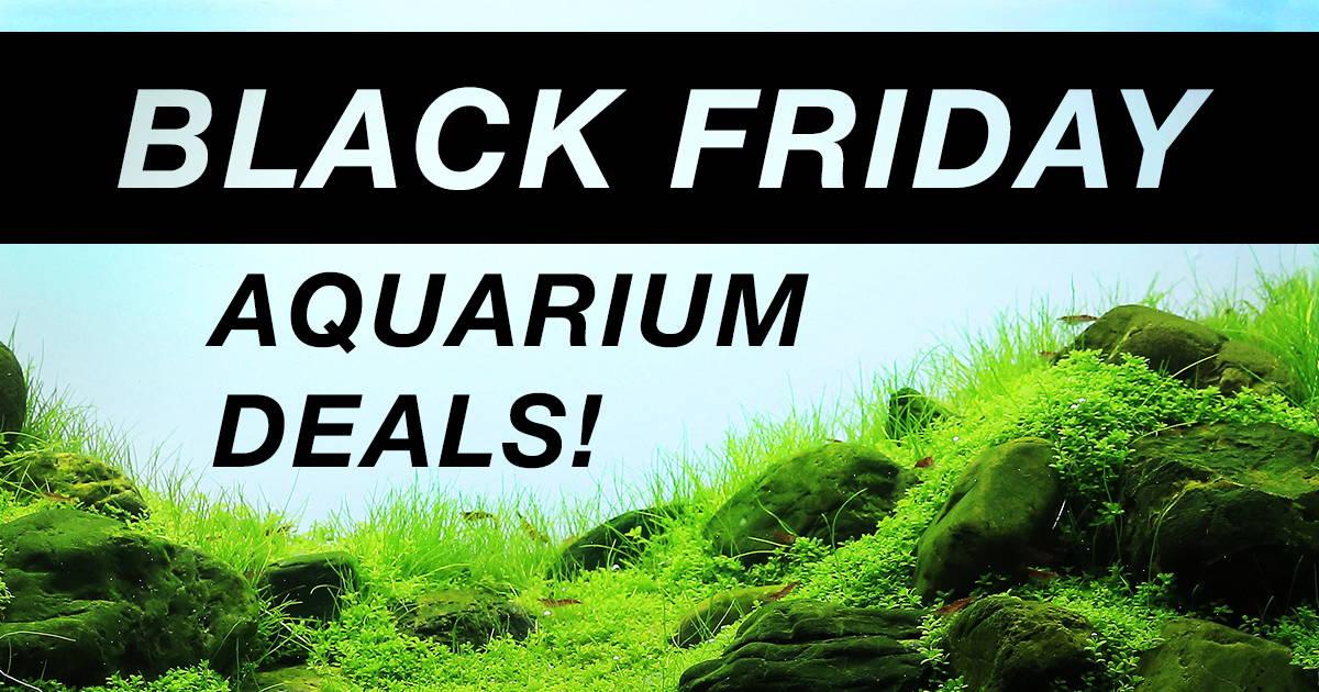 Black Friday 2018 Aquariums