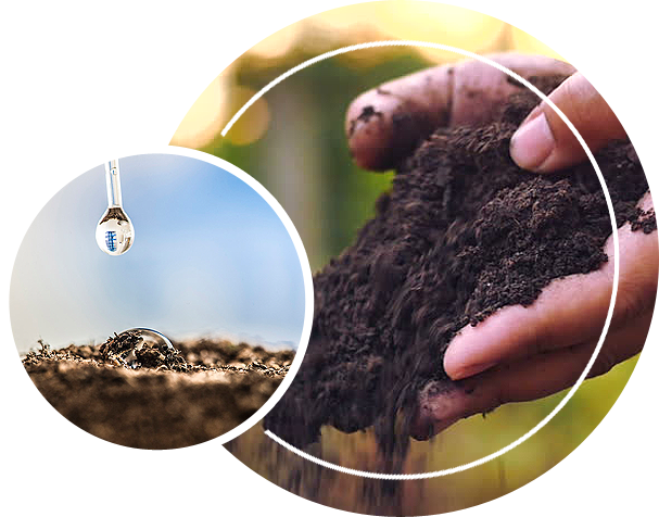 A person holding soil