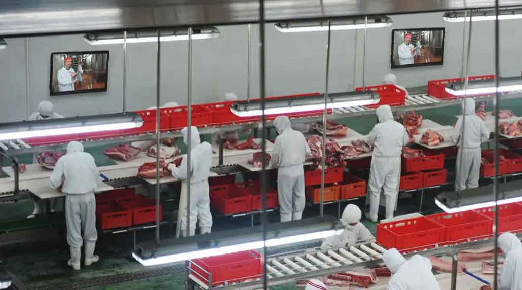 The Display Shield food processing digital signage protection